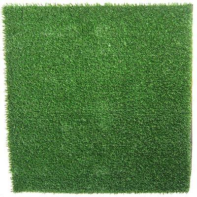 Envylawn Envy Pet Artificial Synthetic Grass Turf Mat for Pets Stain Resistant