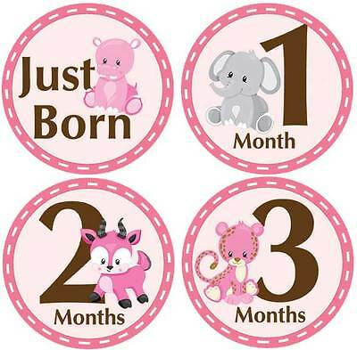 M9 Belly Doodles 16 baby month milestone stickers for girls Pink Safari Animals