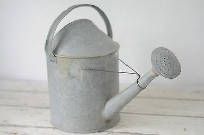 Vintage Galvanized Metal Watering Can Long Neck Water Can