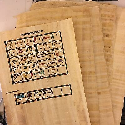 20 Genuine Egyptian Papyrus Blank Sheets for Art Projects + Hieroglyphic info