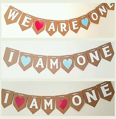 I AM ONE Bunting 1st First Birthday Party Girl boy twin Baby Shower Banner Uk