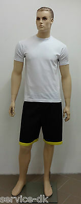 Traditionelle Wing Tsun WT Shorts - Großmeister - NEU