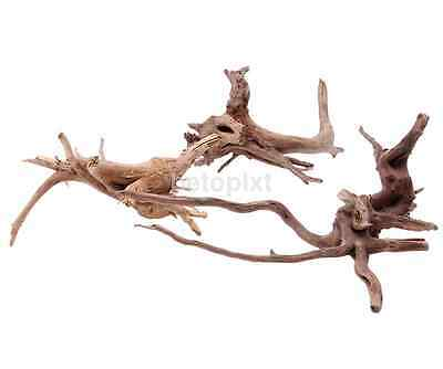 Plants Ornament Driftwood Natural Wood Trunk Fish Tank Aquarium Decoration FR
