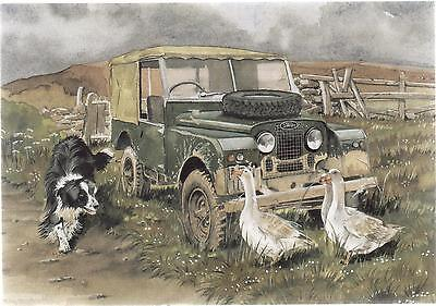 Land Rover With Collie & Geese--Greetings Print Card