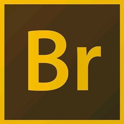 ADOBE BRIDGE CS6 multilingual