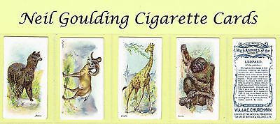 Churchman - Wild Animals of the World 1907 #1 to #50 Cigarette Cards