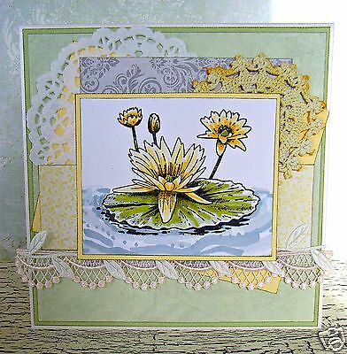 RUBBER STAMP Ez mount Water lily flower card craft scrapbooking