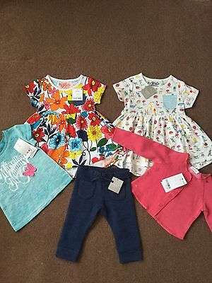 Next Baby Girls Clothes Bundle Outfit Brand New With Tags 6-9 Months