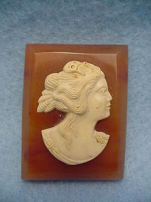 Vintage Celluloid Butterscotch Cameo Pin