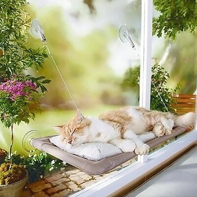 Cat Window Perch with Suction Cups Window-Monted Pet Kitty Seat