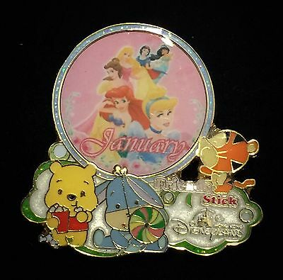 HKDL Annual Passholder Month January Ariel Belle Pooh Tigger Eeyore Disney Pin