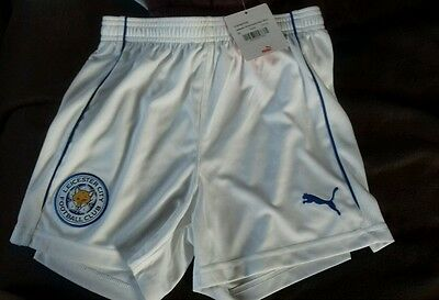 Official LCFC chidrens Home clash shorts