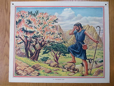 VINTAGE CLASSROOM POSTER Bible Stories Macmillans 1950s The Burning Bush