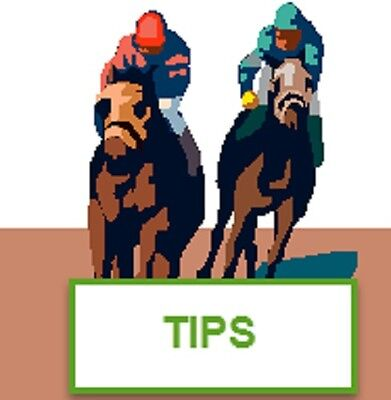 The Placemaster Horse Racing Method - TIPS service