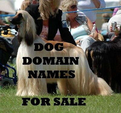 DOG NAME DOMAIN & E-MAIL FOR SALE ~ yourname@affies.co.uk