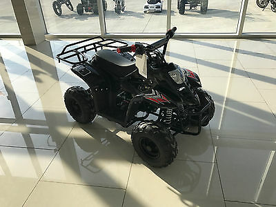 Kids 110cc gas 4 wheeler in stock 4 stroke Automatic FREE SHIPPING FROM CANADA