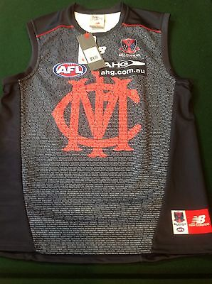 2014 Melbourne Football Club Player Listed Jumper, Jersey, Guernsey