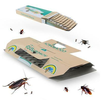 Four Seasons Cockroach House for Home Pest Control Kill Ants Spiders Non-Toxi