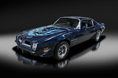 1974 Pontiac Trans Am Super Duty 455 1974 Pontiac Trans Am Super Duty 455. ONE OF THE BEST! MUST READ AND SEE! WOW!!