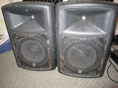 "pair of class D 12"" pa dj speakers"