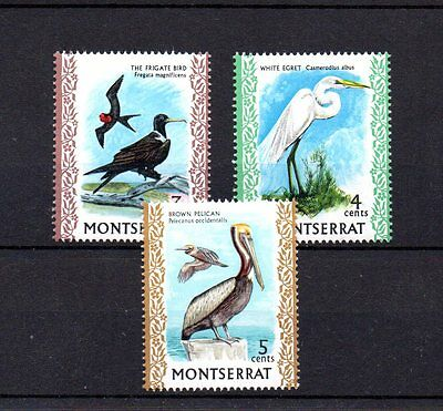 set of 3 mint bird themed stamps from montserrat