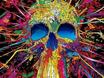 Abstract  Crazy Skull Canvas print wall art Home Decor Quality canvas print