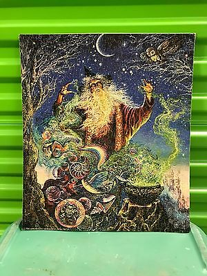 Awesome Vintage Wizard Owl Trippy Magic Puzzle Art Artistic