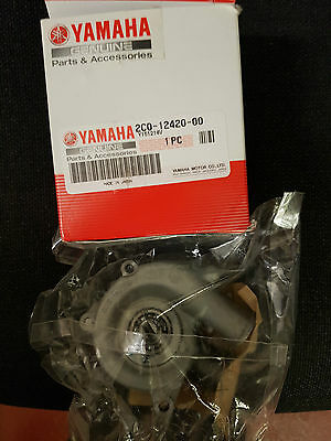 Yamaha YZF R6 2008- Water Pump Assembly 2C0-12420-00