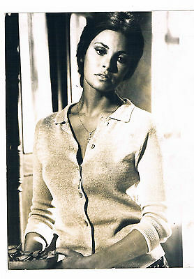 Raquel Welch Actress Vintage Associated Press Publicity photograph 8 x 6