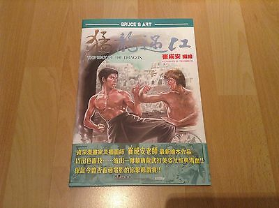Bruce Lee - The Way of the Dragon Art Comic from Hong Kong - TOP
