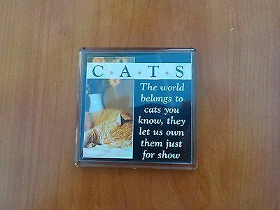 Cat fridge magnet,new