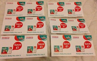 12 X Tesco Pamper Baby-Dry Size 5 Vouchers £12 Worth In Total