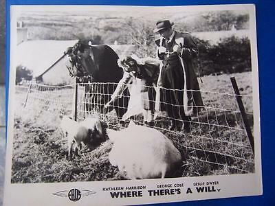 Where There's A Will   - Lobby Card / Film Still (code R1) 10 x 8