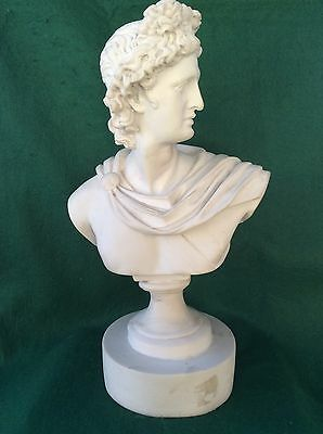 19th Century alabaster classical male bust 13.5 inches