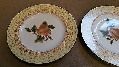 Johnson brothers large plate . Fruit sampler .