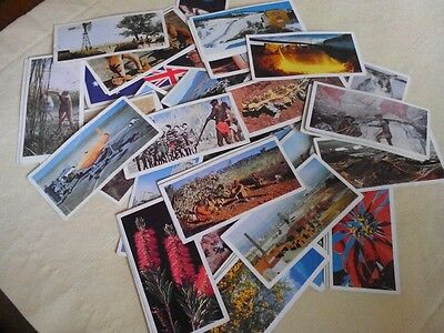 Full Set Of 48 Lyons Tea Cards Australia