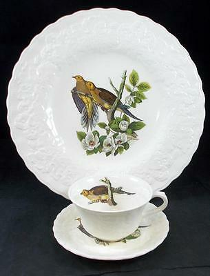 Alfred Meakin BIRDS OF AMERICA Dinner Plate + Cup & Saucer #17 GREAT CONDITION