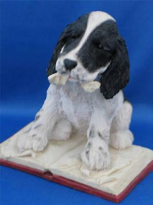 PAW PRINTS SPANIEL with BOOK