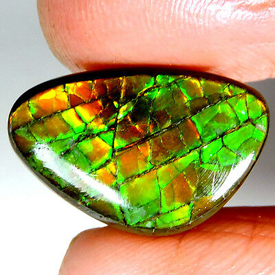 ATTRACTIVE 11.25cts 100% NATURAL BEAUTIFUL AMMOLITE FANCY CABOCHON GEMSTONE