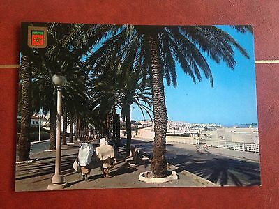 Morocco Tanger Spain Avenue Postcard North Africa