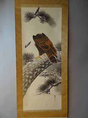 """Japanese hanging scroll Handpainted on SILK  """"A Hawk on pine tree """"   a0110"""
