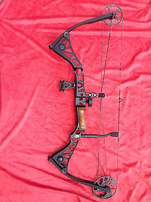 Bow Mathews Solo Cam Drenalin