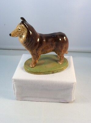 Wade Championship Series Collie