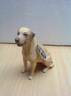 Best of Breed YELLOW LABRADOR(new)