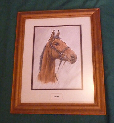 Original Race Horse Drawing of Arkle by Gavina 2003
