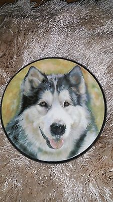 Vintage Husky Dog Miniature  Wall Plate Hand Made Spain Ceraplat VGC