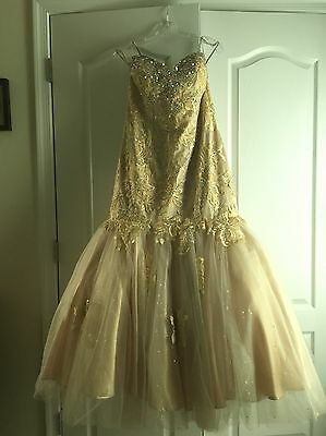 Perfect For Prom!! Gold Lace, Aurora Borealis Crystal Gown, Size 13/14 w/Shoes