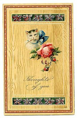 vintage cat postcard white cat w bow & large pink rose in mouth