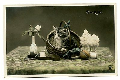 vintage cat postcard cute cat kitten sat in basket on table w cotton sheep ball