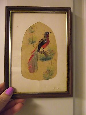 Vintage Real Bird Feather/Hand Painted  Framed Picture Mexico Folk Art signed